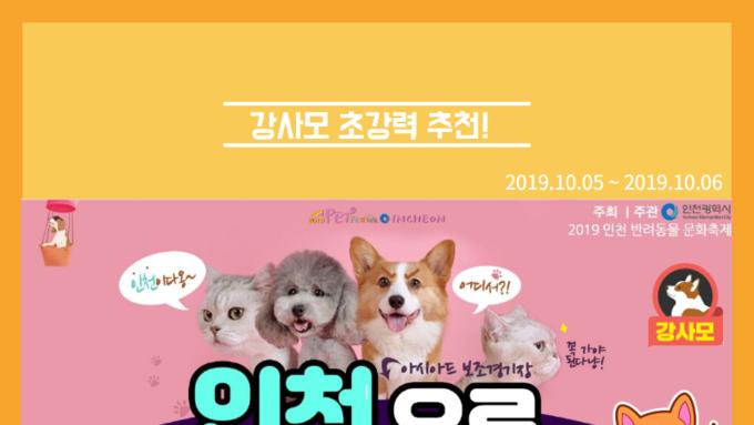 """강사모에서 추천하는 """"2019 인천 반려동물 문화 축제""""가 인천아시아드 보조경기장에서 개최 된다!"""