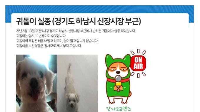 강아지실종! 경기도 하남시 신장시장 부근에서 반려견 귀돌이가 실종